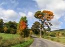Oblicza jesieni w różnych zakątkach Polski