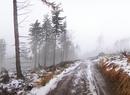 Pogrążone we mgle i ośnieżone Góry Suche